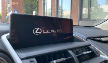 LEXUS NX300h BUSINESS EDITION full